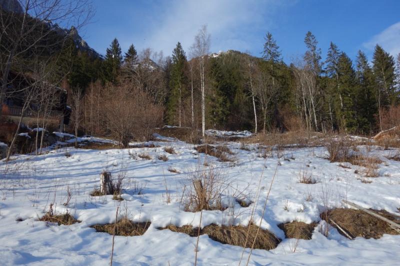 Vente terrain Chamonix mont blanc 3058000€ - Photo 3