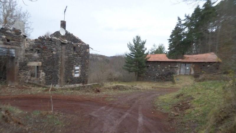 Sale house / villa Le brignon 20000€ - Picture 5