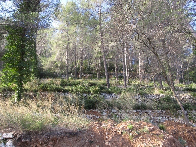 Vente terrain Sollies toucas 140 000€ - Photo 2