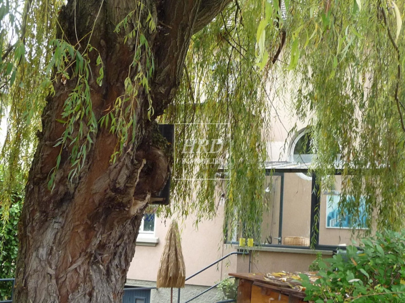 Sale house / villa Strasbourg 474750€ - Picture 1