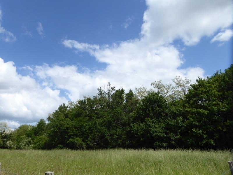 Vente terrain St pierre de chandieu 27000€ - Photo 2