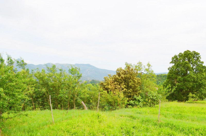 Sale site Berre les alpes 180000€ - Picture 1