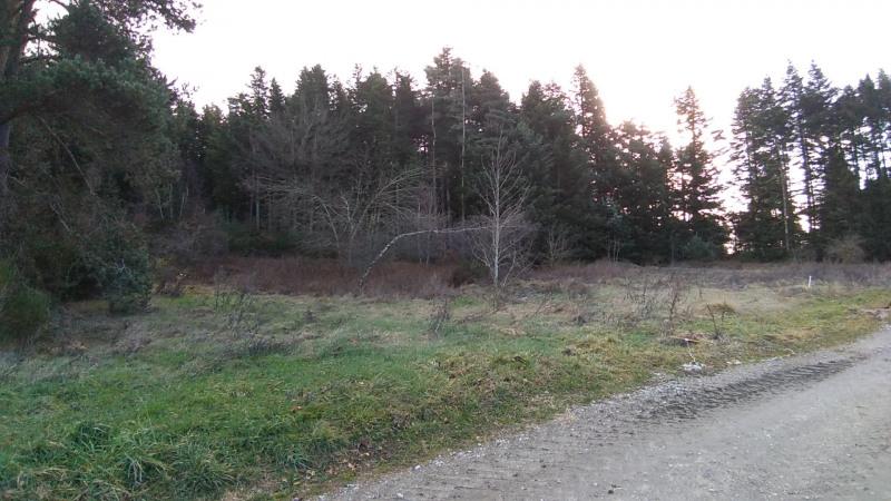 Vente terrain Le chambon sur lignon 29500€ - Photo 4