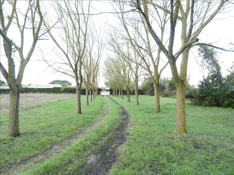 Vente maison / villa St pierre d oleron 355 600€ - Photo 3