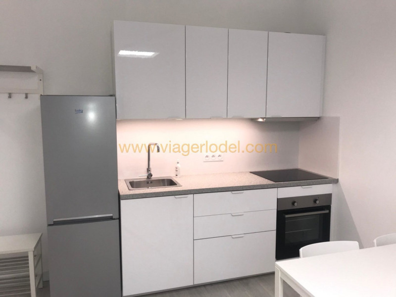 Life annuity apartment Nice 47 500€ - Picture 3