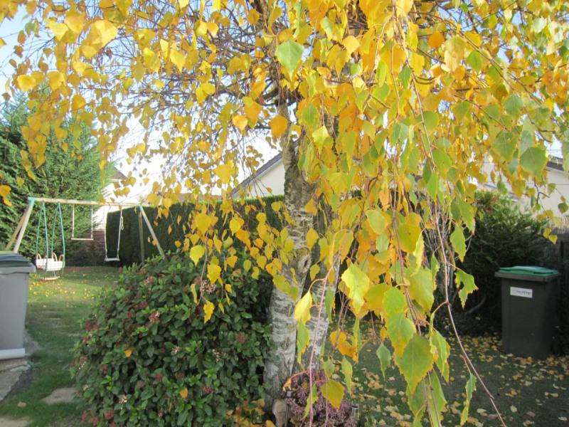 Vente maison / villa Longpont-sur-orge 353600€ - Photo 12