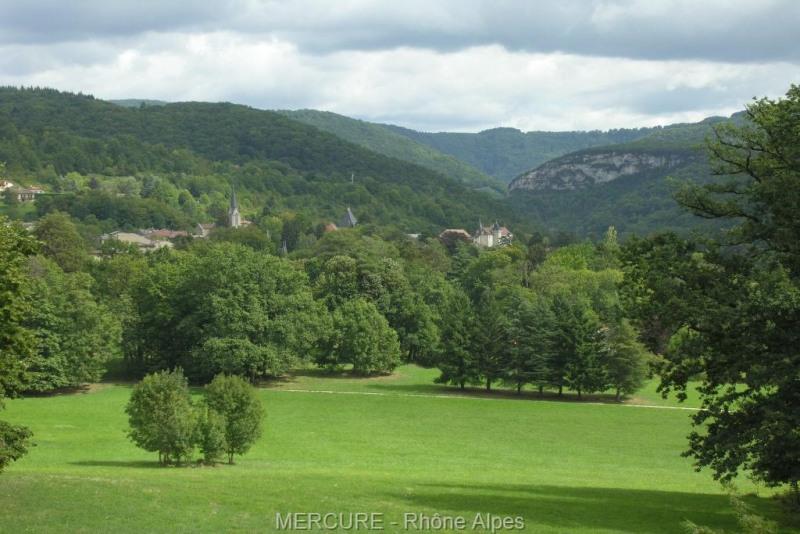 Vente de prestige château Pont-d'ain 1250000€ - Photo 3