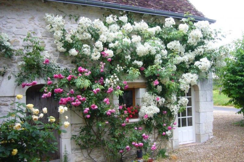 Vente maison / villa Saint-quentin-sur-indrois 220500€ - Photo 5