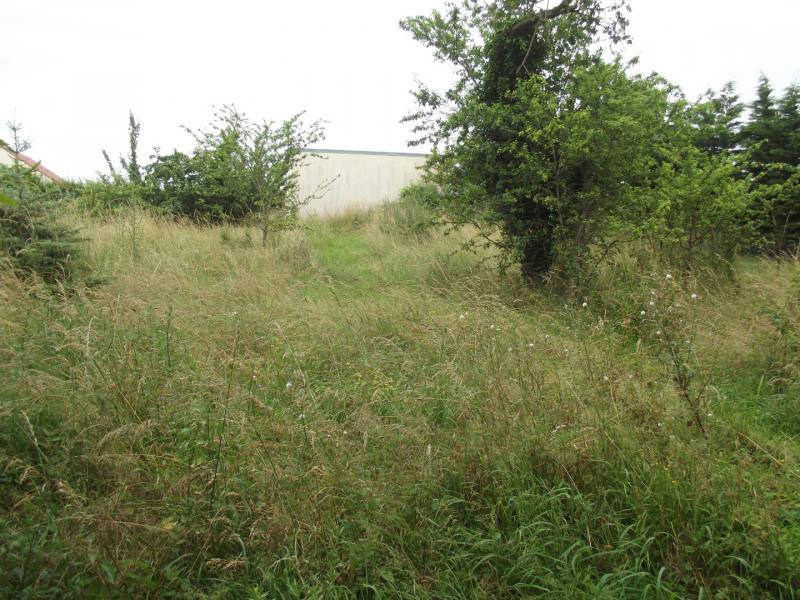 Vendita terreno Léthuin 49000€ - Fotografia 2