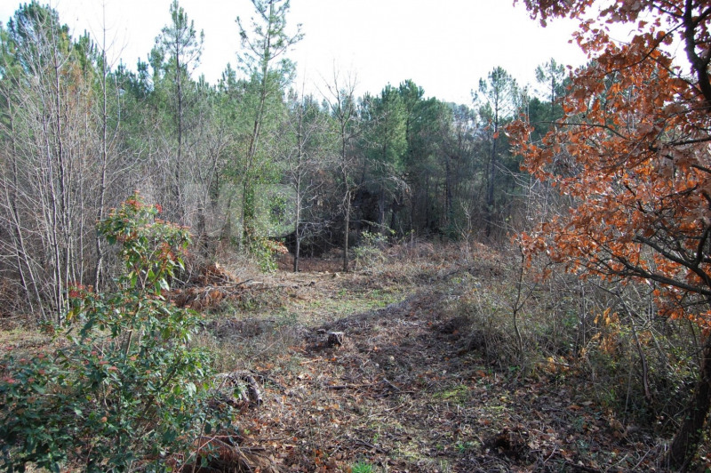 Vente terrain Joyeuse 86000€ - Photo 2