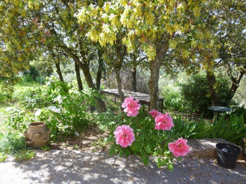 Vente de prestige maison / villa Nimes 595000€ - Photo 5