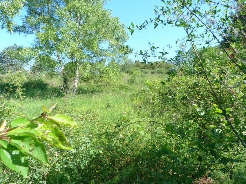 Vente terrain Charny oree de puisaye 25000€ - Photo 3
