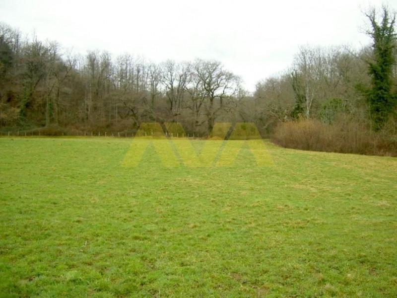 Vendita terreno Mauléon-licharre 42000€ - Fotografia 3
