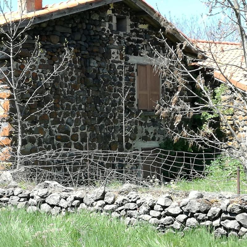 Vente maison / villa St martin de fugeres 65200€ - Photo 15