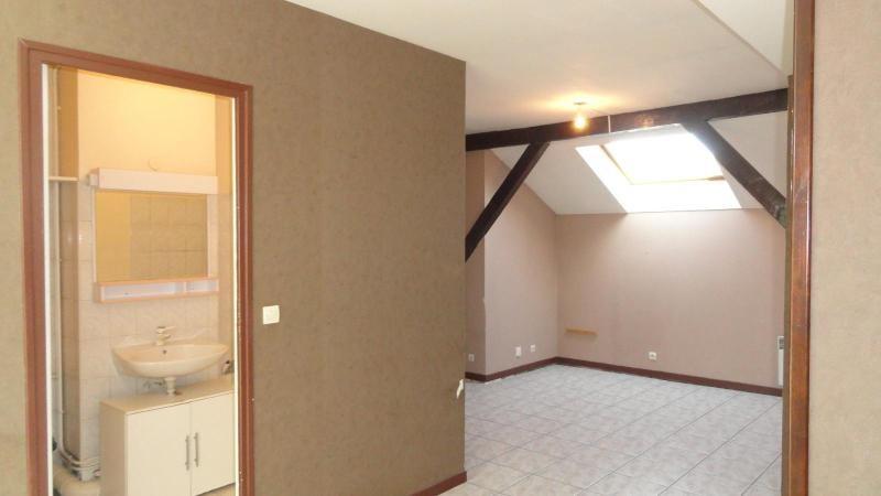 Location appartement Vienne 395€ CC - Photo 1