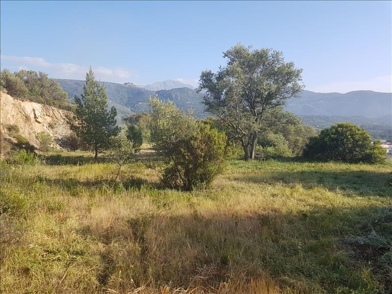 Vente terrain Corbara 720000€ - Photo 1