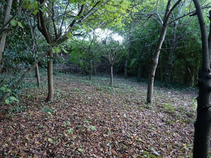 Vente terrain Coutances 45000€ - Photo 3