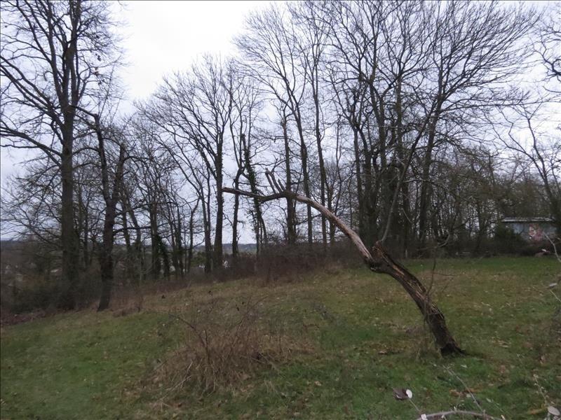 Vente terrain Frepillon 48000€ - Photo 1