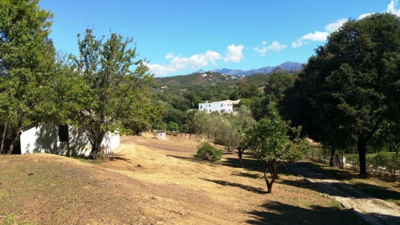 Vente terrain Eccica-suarella 130000€ - Photo 5