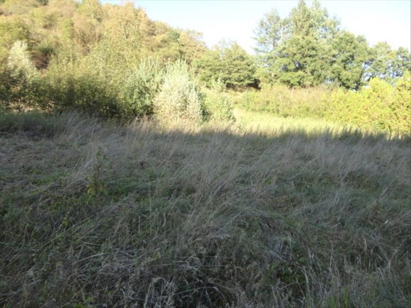 Vente terrain Manglieu 29000€ - Photo 3