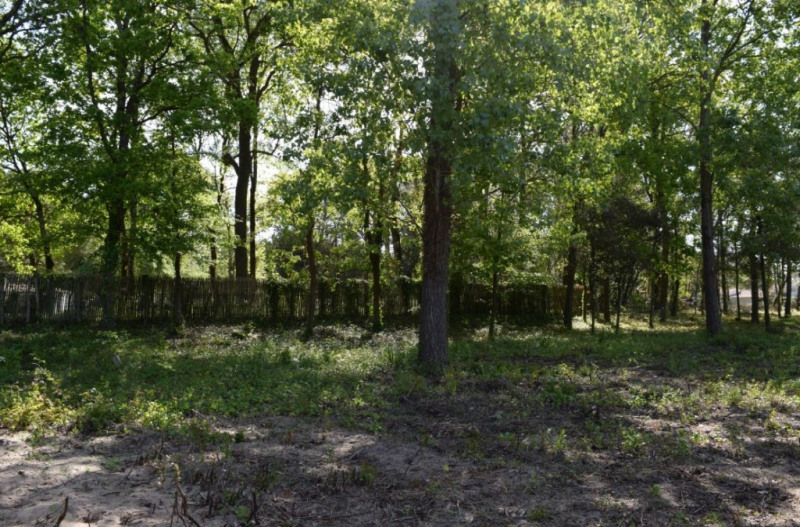Vente terrain Saint hilaire de riez 105 900€ - Photo 2