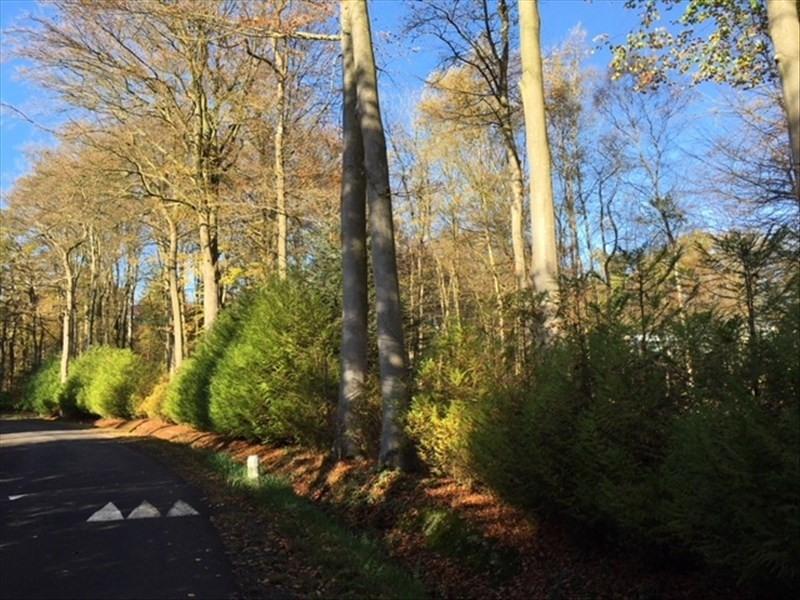 Vente terrain St gatien des bois 165000€ - Photo 3
