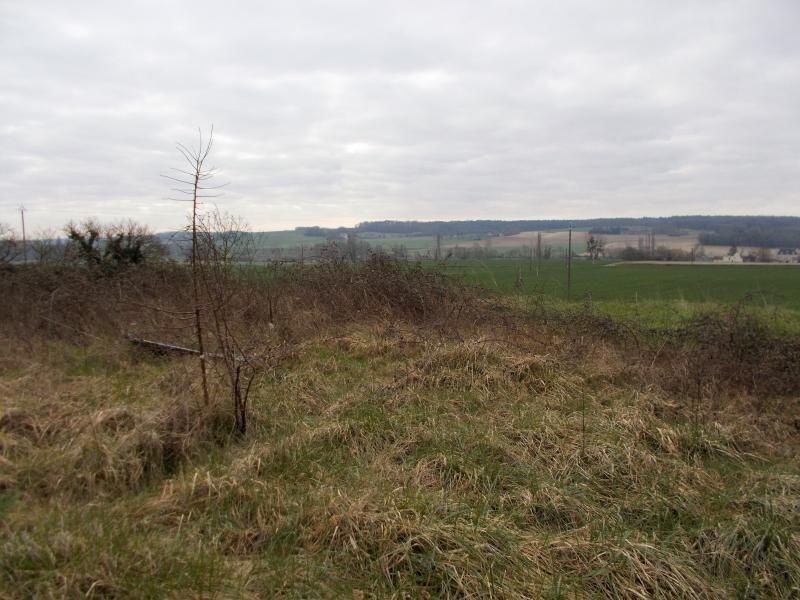 Vente terrain Crissay sur manse 49000€ - Photo 2