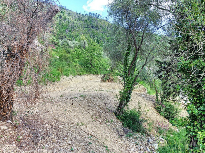 Vente terrain Castellar 520 000€ - Photo 6