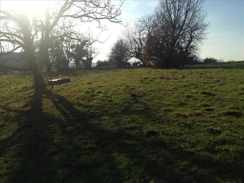 Verkoop  stukken grond Saint-romain-de-surieu 96000€ - Foto 6