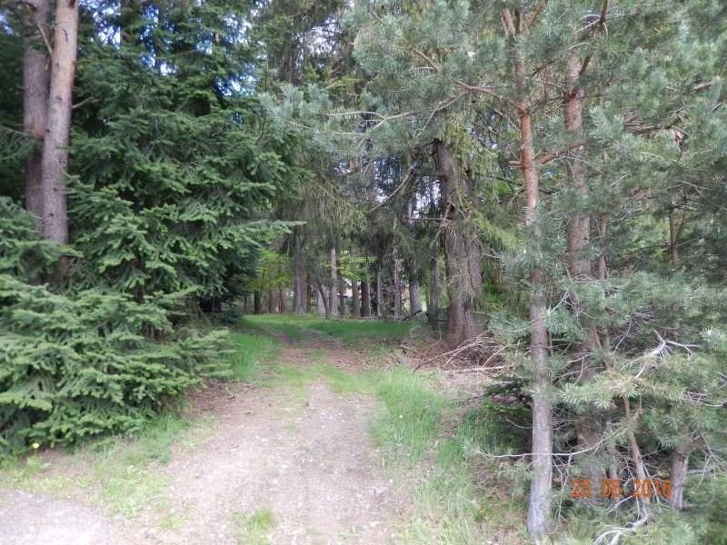 Vente terrain Le chambon sur lignon 32600€ - Photo 4