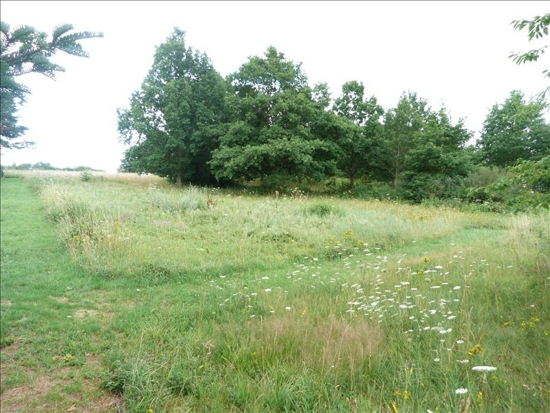 Vente terrain Douchy-montcorbon 18 300€ - Photo 2