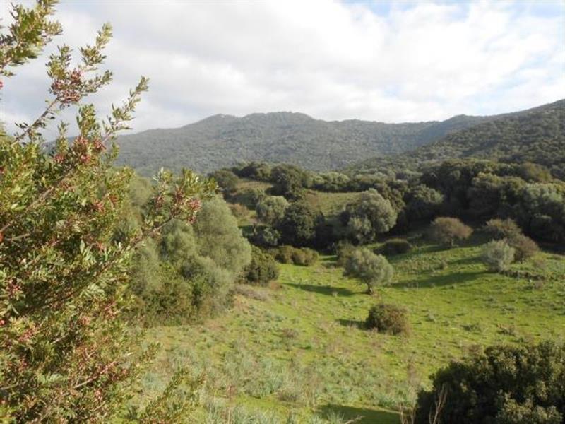 Vente terrain Sollacaro 575000€ - Photo 5