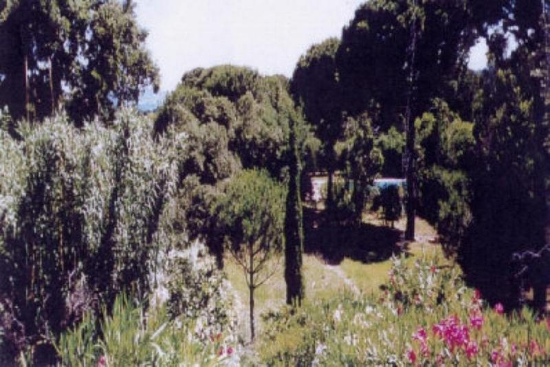 Vente maison / villa Ste maxime 1265000€ - Photo 26