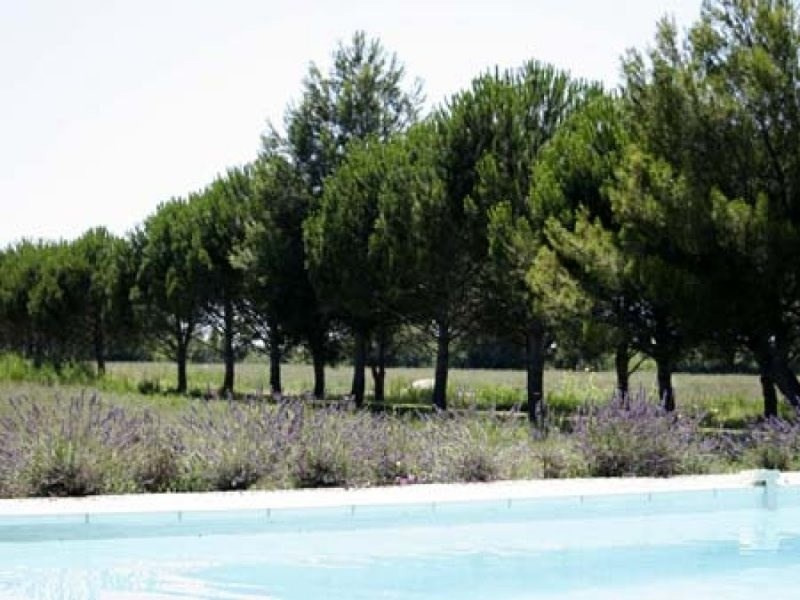 Deluxe sale house / villa Arles 2 480 000€ - Picture 5