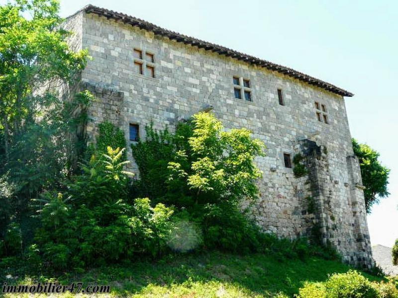 Vente de prestige maison / villa Prayssas 474000€ - Photo 11