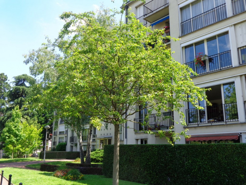 Vente appartement Sceaux 447 200€ - Photo 2