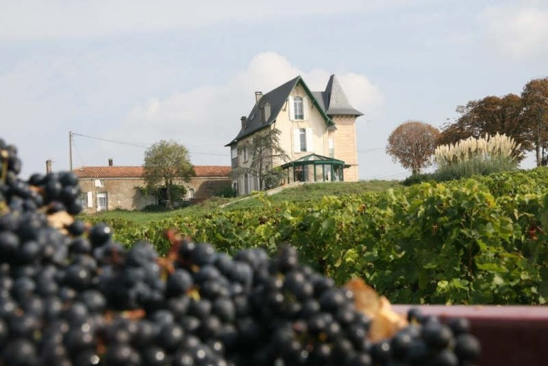 Deluxe sale house / villa Plassac 945000€ - Picture 1