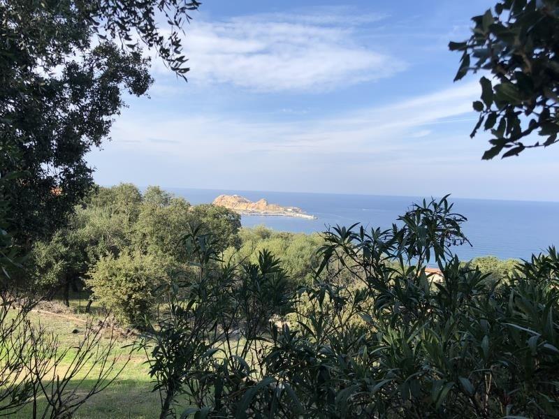 Vente de prestige maison / villa Monticello 820000€ - Photo 8