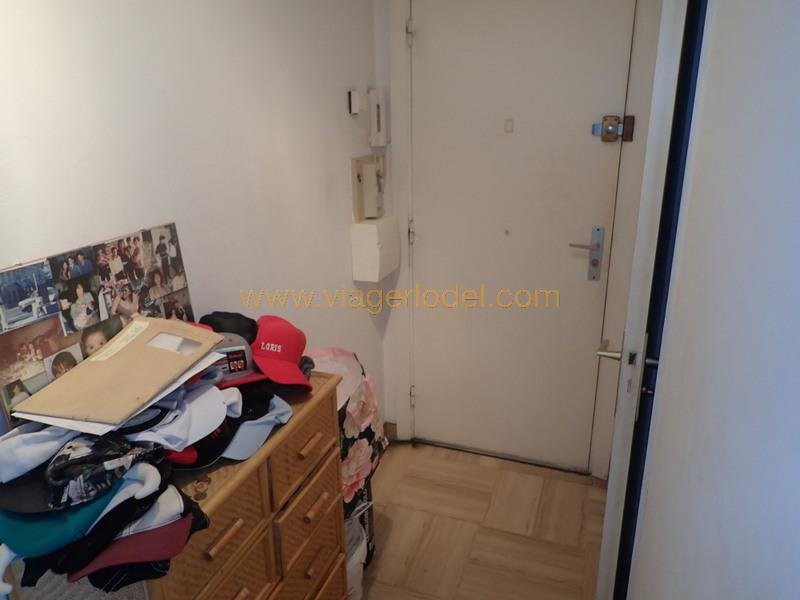 Life annuity apartment Saint-laurent-du-var 39 000€ - Picture 5