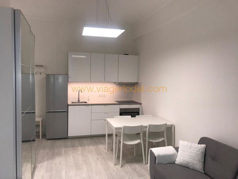 Life annuity apartment Nice 47 500€ - Picture 1