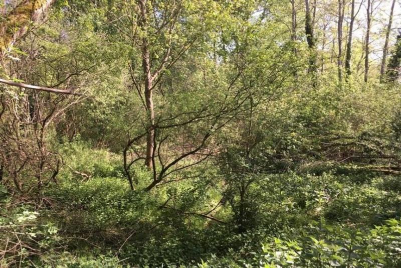 Vente terrain Villers cotterets 18000€ - Photo 1