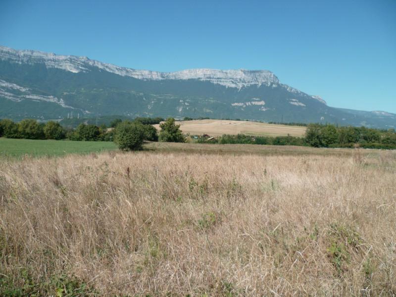 Verkoop  stukken grond Champagnier 315000€ - Foto 3