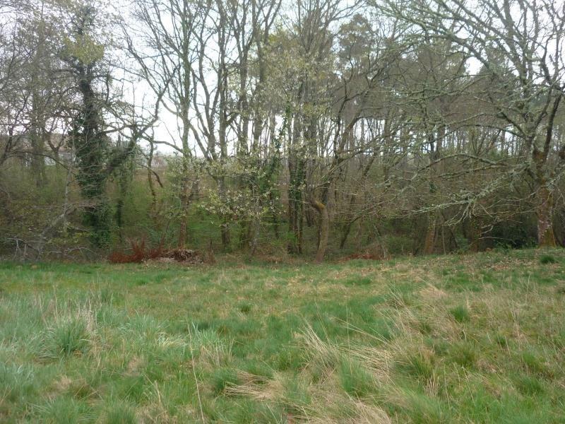 Vente terrain Belhade 49000€ - Photo 5