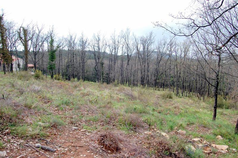 Vendita terreno Mons 160000€ - Fotografia 2