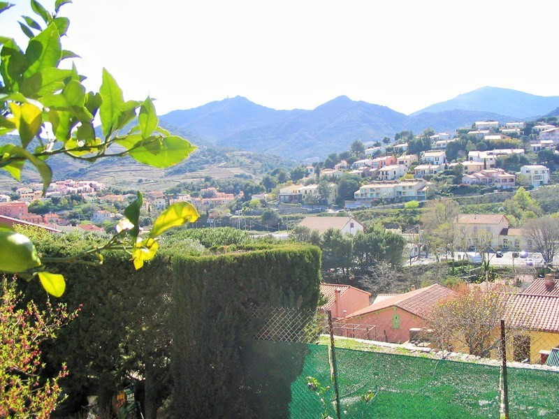 Location vacances appartement Collioure 318€ - Photo 1