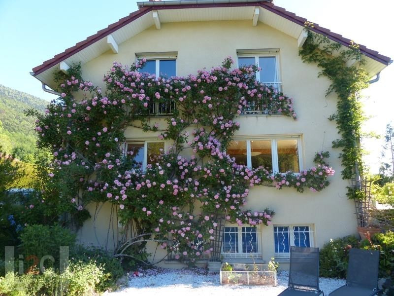 Sale house / villa Echenevex 990000€ - Picture 4