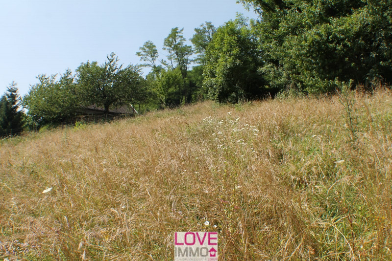 Vente terrain La tour du pin 55 000€ - Photo 2