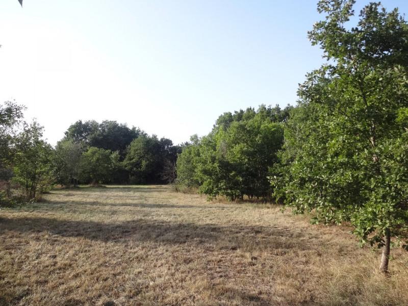 Vente terrain Saint-paul-sur-save 88620€ - Photo 3
