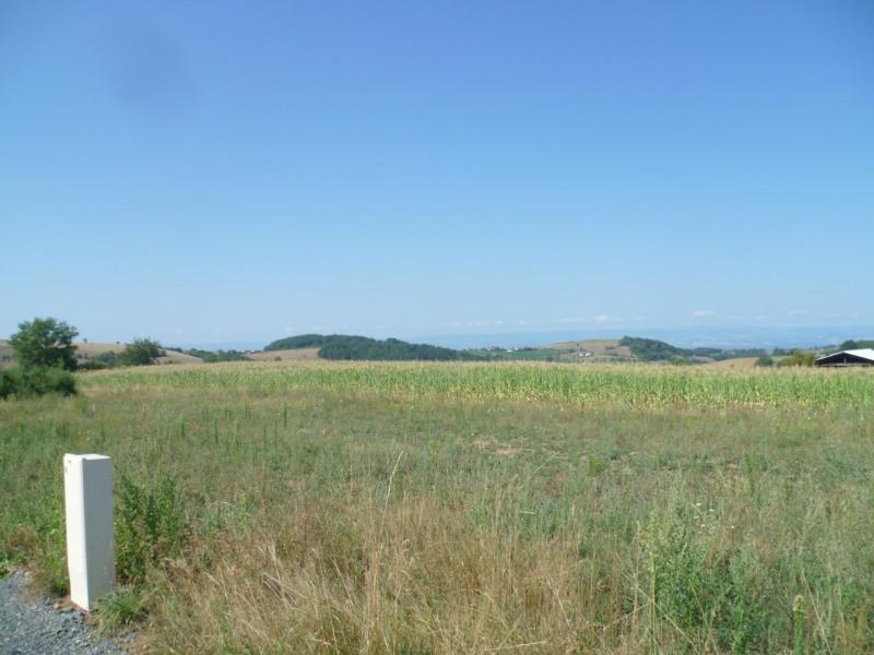 Vente terrain Virigneux 60000€ - Photo 2