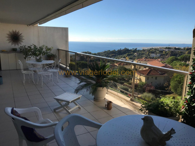 Life annuity apartment Nice 199 500€ - Picture 2